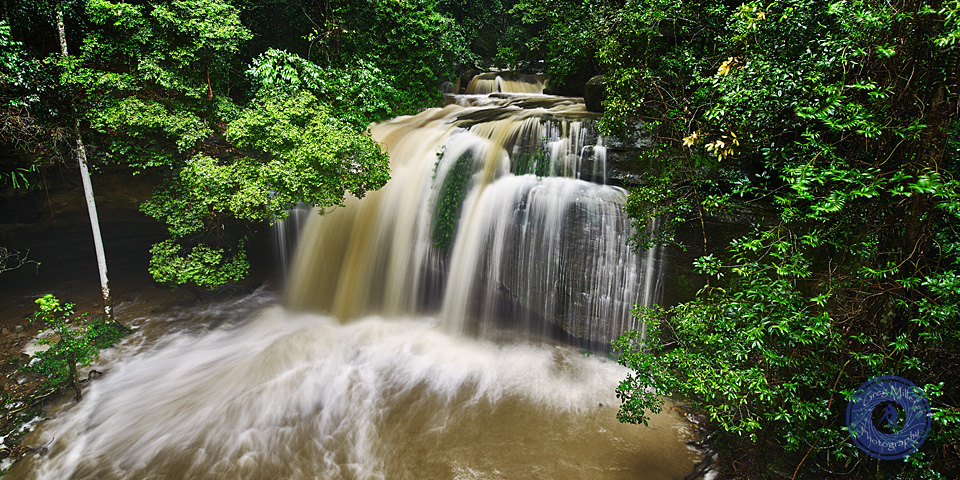 Serenity Falls, Buderim. Sunshine Coast. Queensland. Australia.