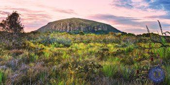 Mount Coolum, Sunshine Coast.