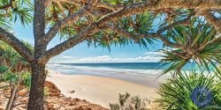 Coolum Beach, Sunshine Coast, Queensland, Australia.